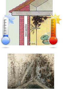 umidità di risalita e condensa
